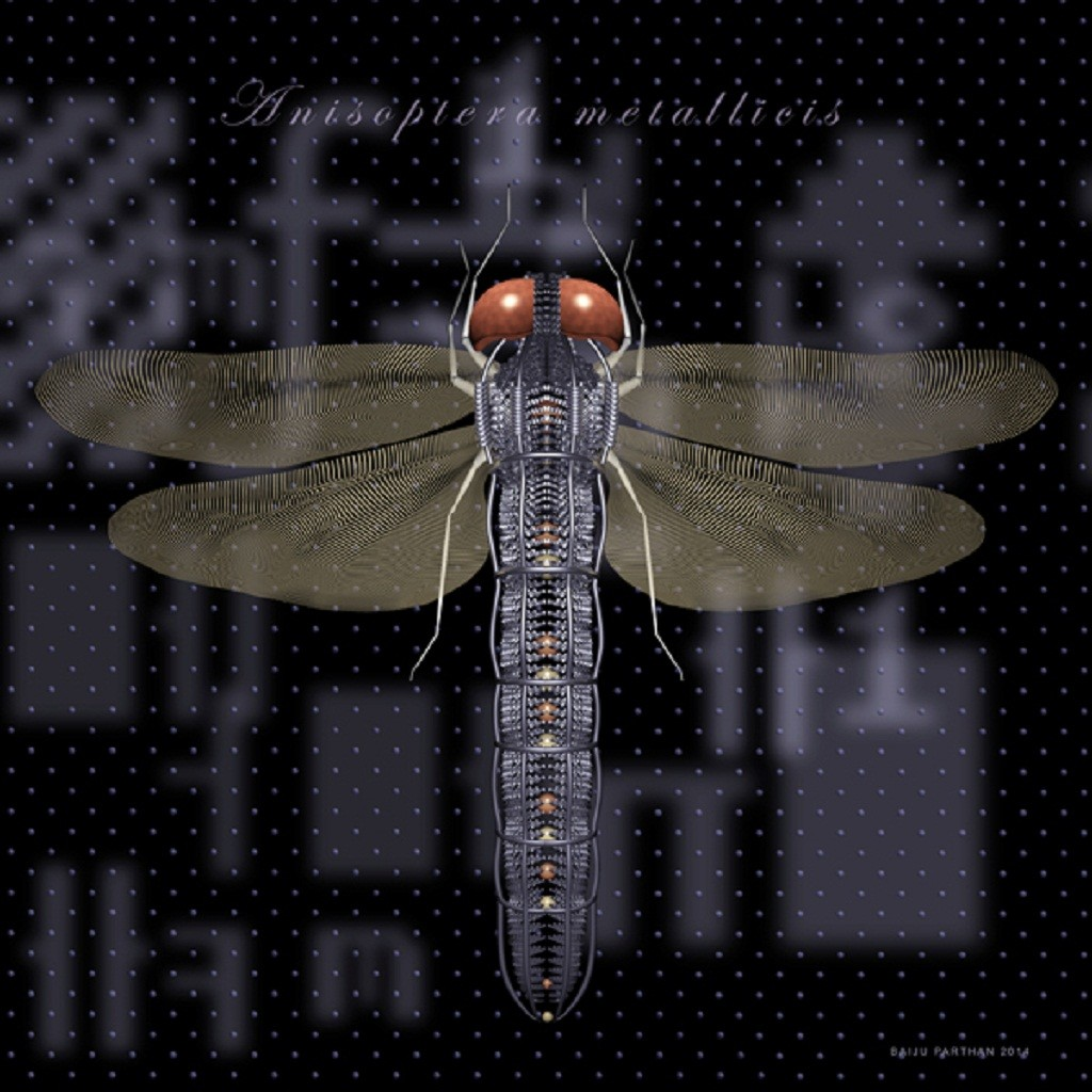 Process D - Dragonfly (Anisoptera Matallicis) by Baiju Parthan, Expressionism Photography, Digital Print on Archival Paper, Black color