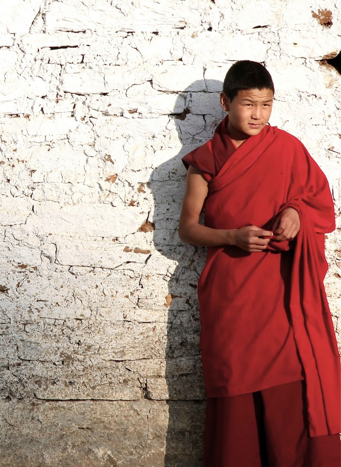 In The Shadow Of The Buddha By Shuchi Pandya