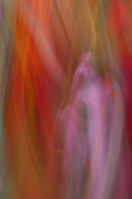 Camera Painting by Saify Akolawala, Abstract Photography, Digital Print on Archival Paper, Brown color