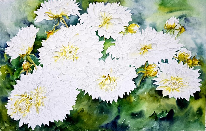 White dahlias by Manju Srivatsa , Impressionism Painting, Watercolor on Paper, Green color