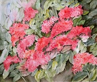 Ixora by Manju Srivatsa , Impressionism Painting, Watercolor on Paper, Brown color