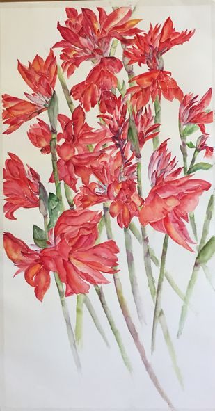 Canna-4 by Manju Srivatsa , Impressionism Painting, Watercolor on Paper, Pink color