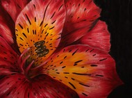 Lily by Shveta Saxena, Realism Painting, Acrylic on Canvas, Brown color