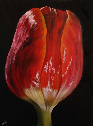 Tulip by Shveta Saxena, Realism Painting, Acrylic on Canvas, Brown color