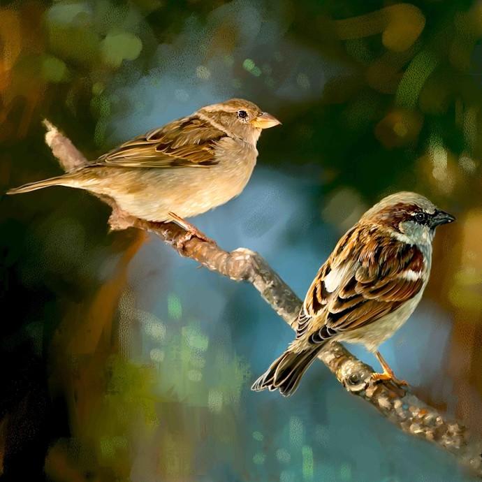 LITTLE BIRDS-19 Digital Print by The Print Studio,Digital