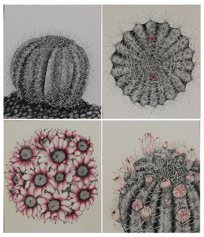 Thorn have flowers by Rajashree Nayak, Expressionism Drawing, Pen on Paper, Gray color