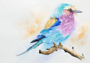 The Fuzzy Ball - Lilac-breasted roller bird Watercolor Painting by Nisha Sehjpal by Nisha Sehjpal, Impressionism Painting, Watercolor on Paper,