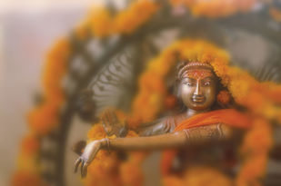 Natraj by pankaj agrawal, Minimalism Photography, Digital Print on Canvas, Gray color