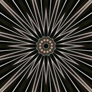 Hallucinating Flower by Shrikanth R. Poojari, Digital Digital Art, Digital Print on Enhanced Matt, Gray color