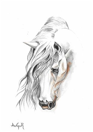 White Horse by Augur, Illustration Painting, Watercolor on Paper, White color