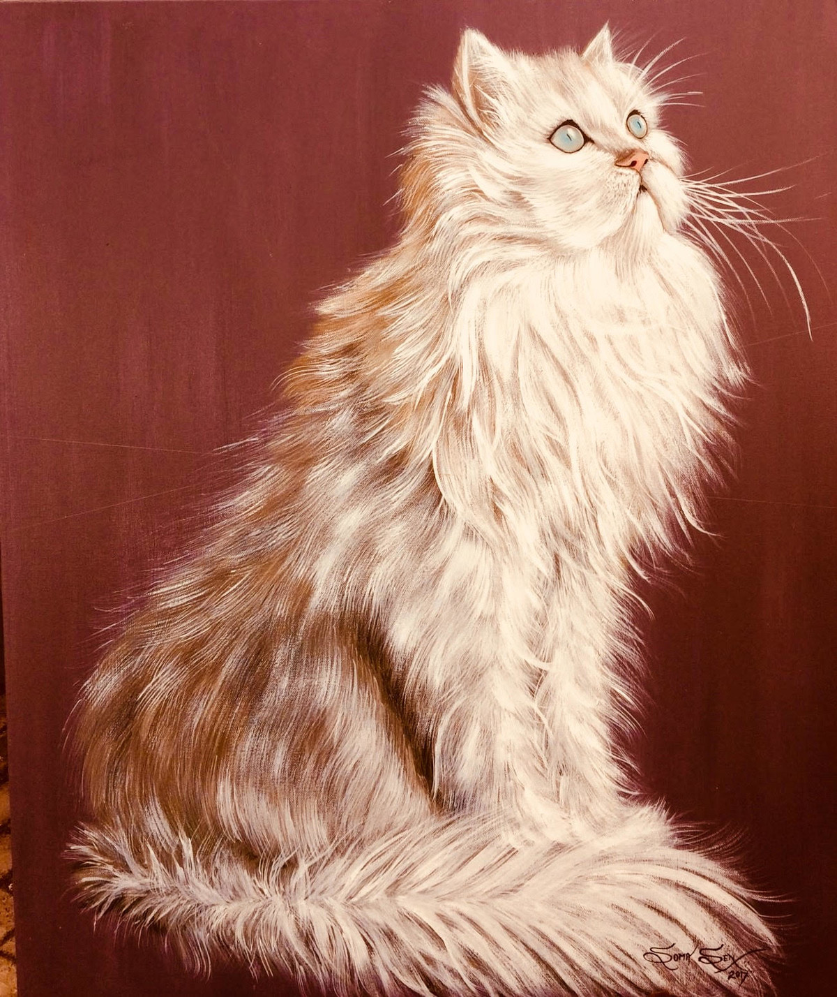 The White Cat Digital Print by Soma Sen,Photorealism