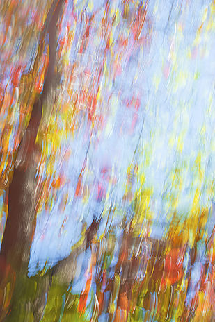TOWARDS THE ULTIMATE ABODE by SUJATA DIXIT, Digital Photography, Digital Print on Paper,