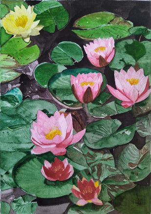 Lotus by Pooja Wadekar, Expressionism Painting, Watercolor on Paper, Axolotl color