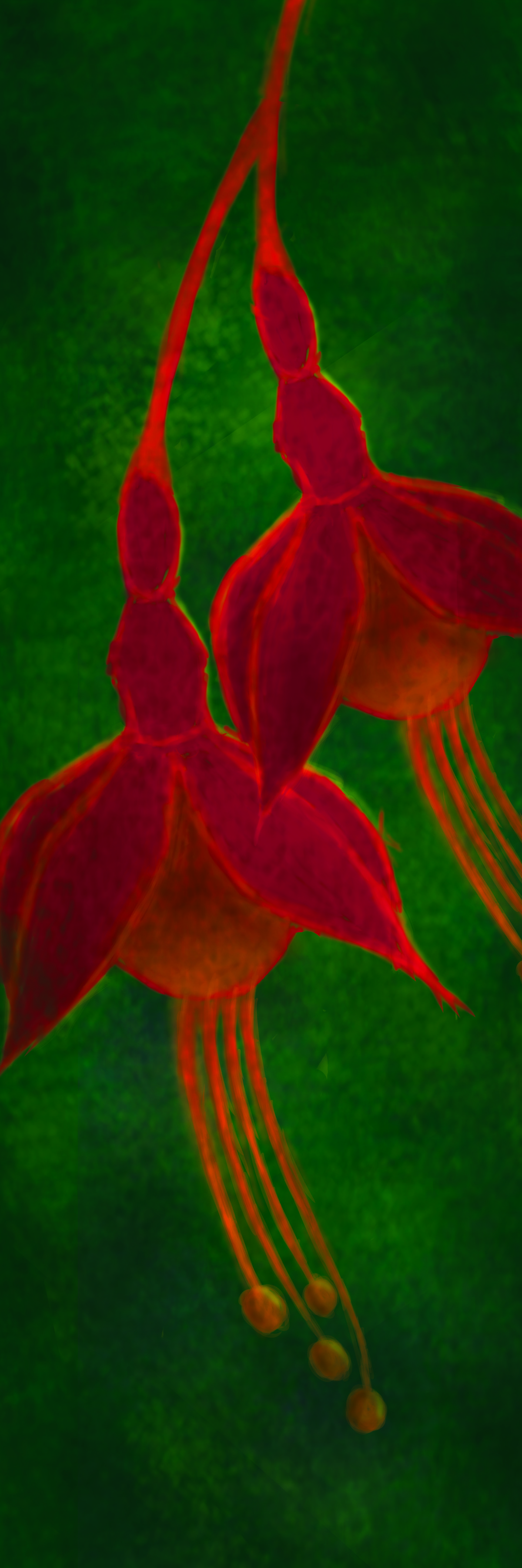 WALL FLOWER by Leya Srinivas, Digital Digital Art, Digital Print on Canvas, English Holly color