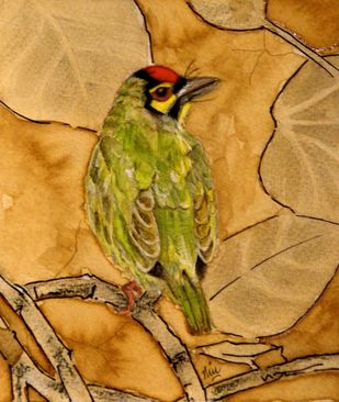Coppersmith Barbet by Nin Taneja, Impressionism Painting, Watercolor on Paper, Tussock color
