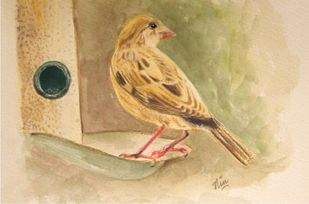 Sparrow love by Nin Taneja, Impressionism Painting, Watercolor on Paper, Tan color