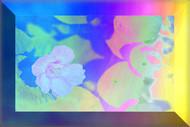 3D Flower Frame by Shalabh Saxena, Digital Digital Art, Print on Paper, New Car color
