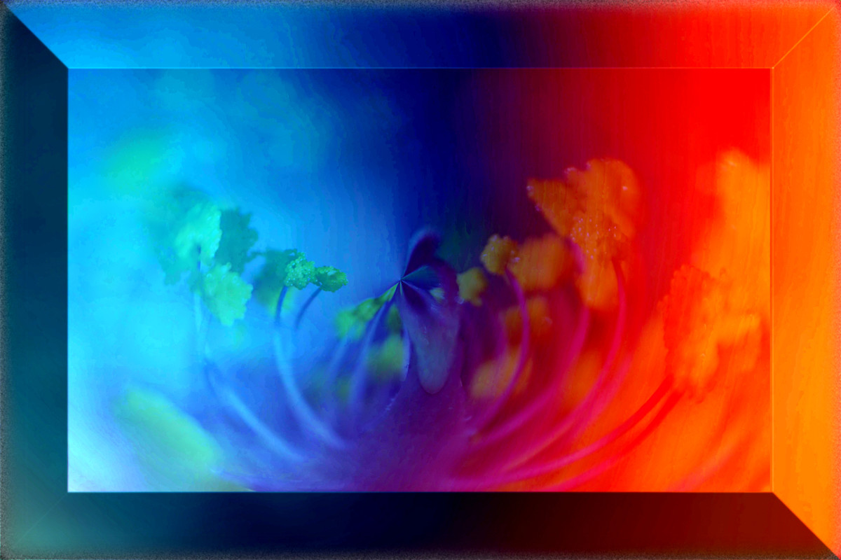 3D Flower Frame by Shalabh Saxena, Digital Digital Art, Print on Paper, Port Gore color