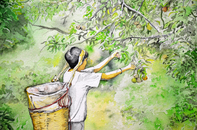 The fruit collector by HULLAS JAIN, Impressionism Painting, Watercolor on Paper, Swamp Green color