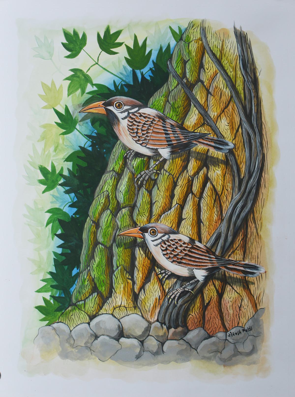 Birds 286 by santosh patil, Decorative Painting, Watercolor on Paper, Lunar Green color