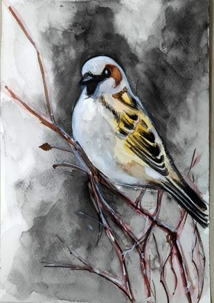 sparrow by Shailesh Salvi, Impressionism Painting, Watercolor on Paper, Gray color