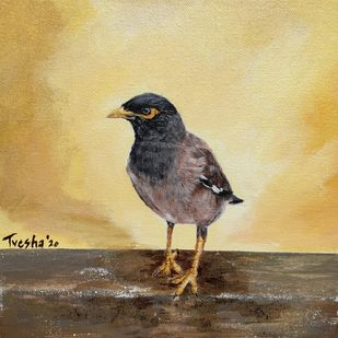 Curious Myna by Tvesha Singh, Expressionism Painting, Acrylic on Canvas, Straw color