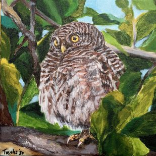 Watchful owlet by Tvesha Singh, Impressionism Painting, Acrylic on Canvas, Kelp color