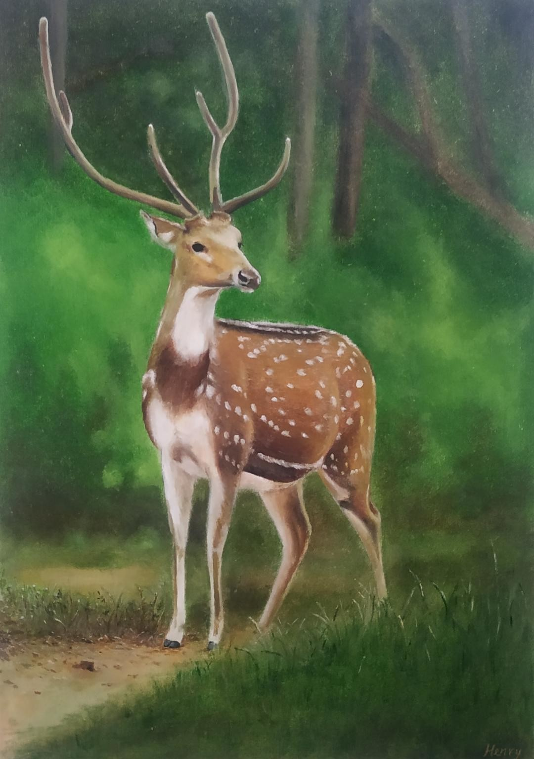Deer by Henry Charles, Expressionism Painting, Oil on Paper, Tom Thumb color