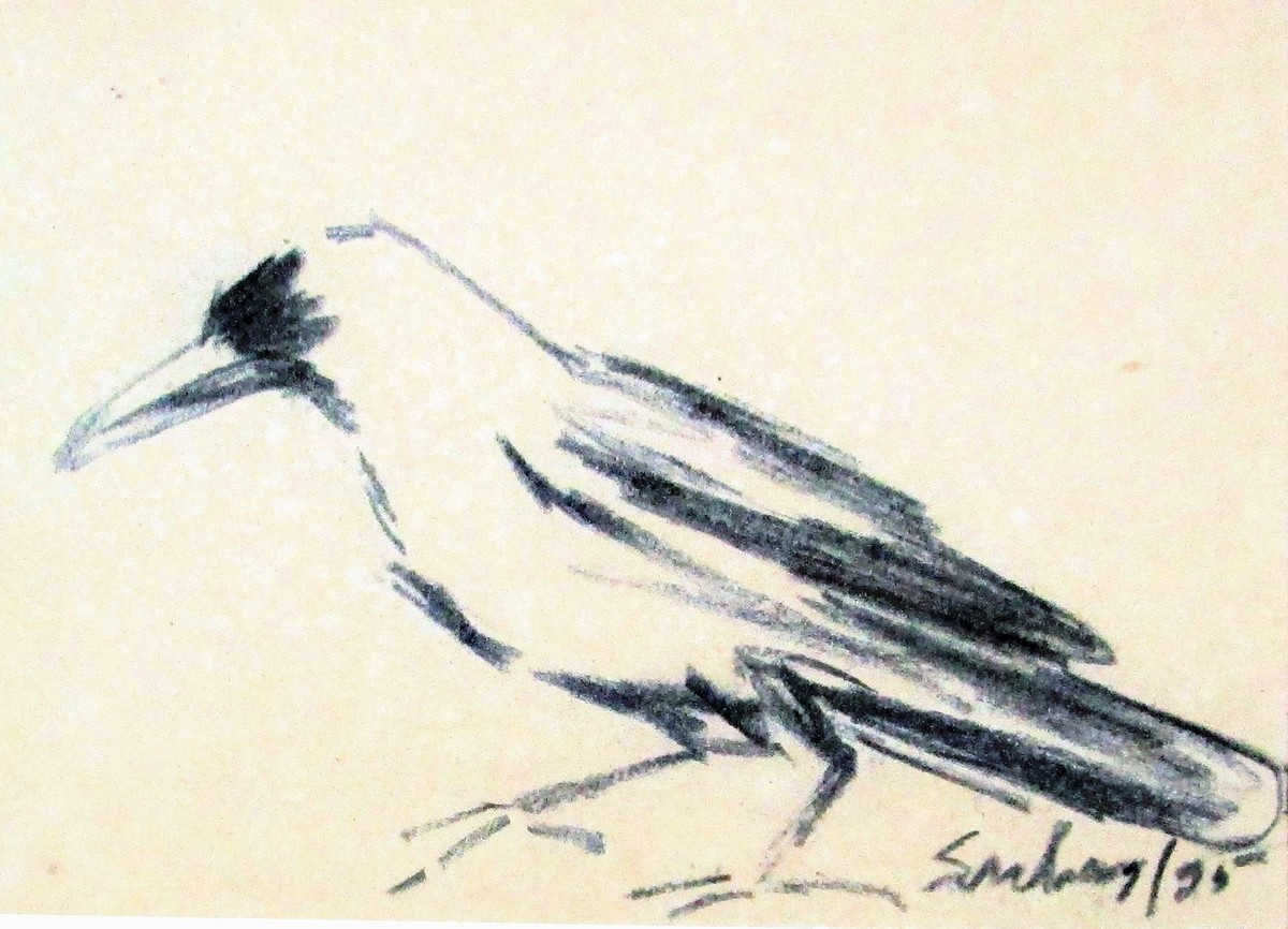Crow by Suhas Roy, Illustration Painting, Charcoal on Paper, Quarter Spanish White color