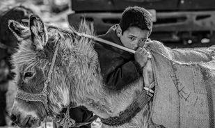 Me and My Donkey Digital Print by SRIJAN NANDAN,Image