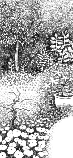 Garden in pen and ink Digital Print by Shalini Sinha,Illustration