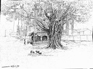 The old tree by Munmun, Illustration Drawing, Pen on Paper, Mine Shaft color
