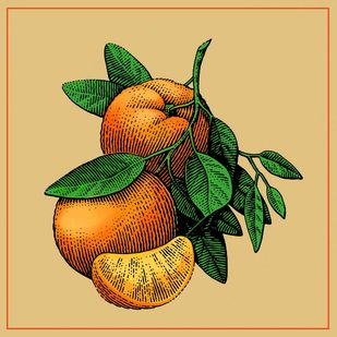 orange Digital Print by The Print Studio,Realism