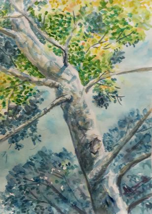 Foliage and Trunk by Ajay Anand, Impressionism Painting, Watercolor on Paper, Xanadu color