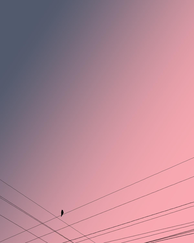OverHead by adnan., Digital Digital Art, Digital Print on Paper, Careys Pink color
