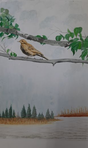 Sparrow on the bark by Surendra Kumar Srivastava, Decorative, Illustration Painting, Watercolor on Paper, Jumbo color