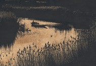Riverscape - Limited Edition of 20 Artwork by Mayurakshi, Realism Digital Art, Giclee Print on Hahnemuhle Paper, Misty Moss color