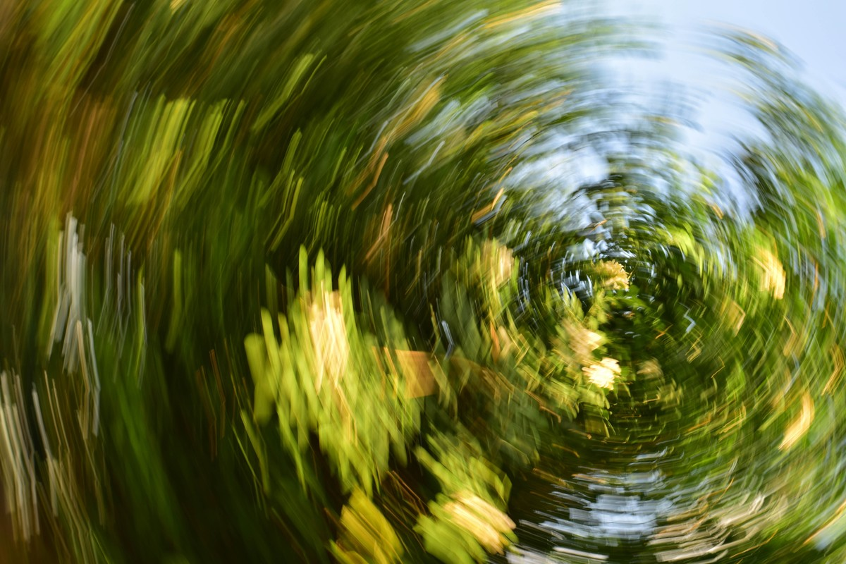Whirl of Nature by Shashiranjan Prakash, Digital Photography, Reproduction Print, Waiouru color