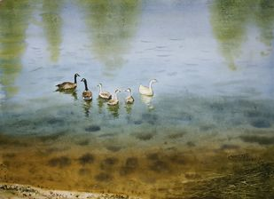 Ducks are Enjoying by Niketan Bhalerao, Illustration Painting, Watercolor on Paper, Gray color