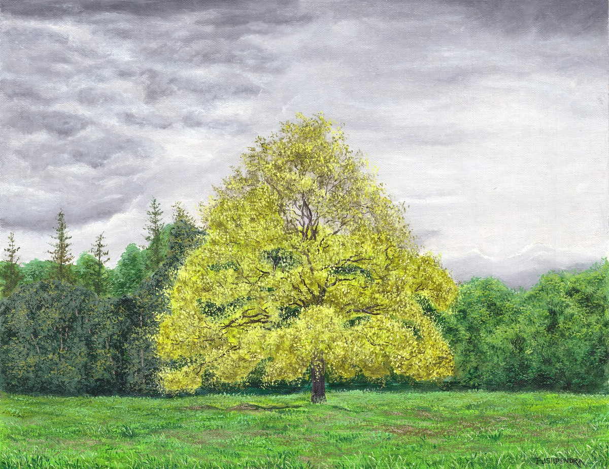 Yellow tree by Pushpendra Singh Mandloi, Illustration Painting, Oil on Canvas, Silver color