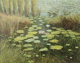 Water Lily by Arabinda Mukherjee, Realism Painting, Oil on Canvas, Olive color