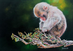 Baby Monkey by Muralidhar Suvarna, Expressionism Drawing, Acrylic & Pencil On Paper, Black color
