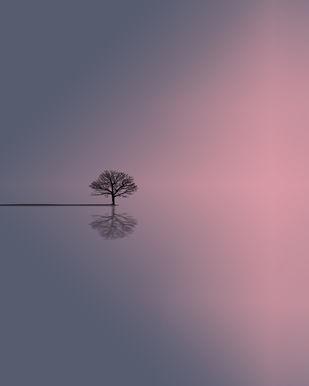 Nowhere by adnan., Digital Digital Art, Digital Print on Paper, Gray color